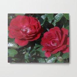 Red Rose Pair Metal Print