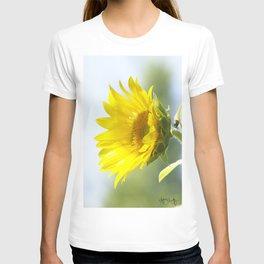 Ladybug and it's Sunflower T-shirt