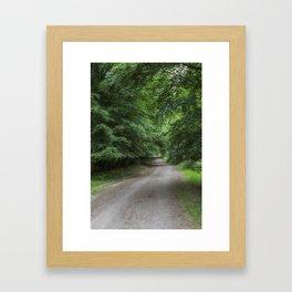 Shady Beech Path 2 Framed Art Print
