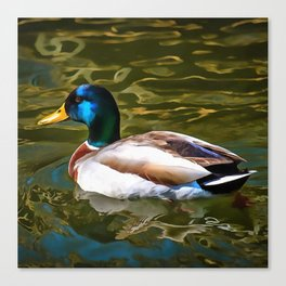 The Son Of A Duck Is A Floater Canvas Print