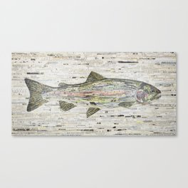 Rainbow Trout Collage (v2) by C.E. White Canvas Print