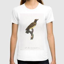 Black masked Roller from Histoire Naturelle des Oiseaux de Paradis et Des Rolliers (1806) by Jacques T-shirt