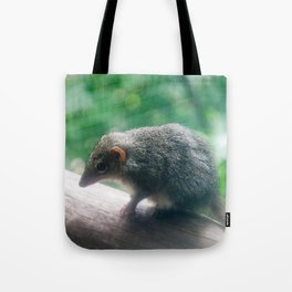 Kangaroo Island Dunnart Tote Bag
