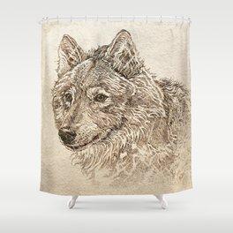 The Gray Wolf's Gaze Shower Curtain