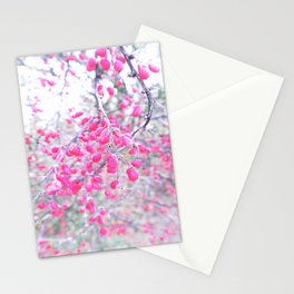 rose berries Stationery Cards
