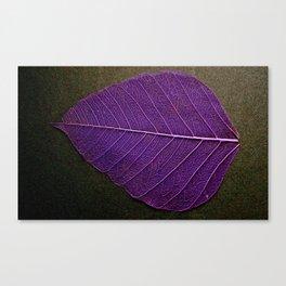 Life Lines * Purple Black * Thailand Bodhi Leaf Skeletons * Fine Art Print  Canvas Print