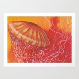 Jellyfish#2 Art Print
