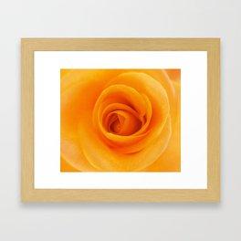 Blossomed by B & BB Framed Art Print