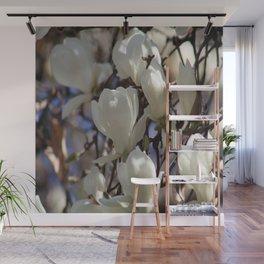 Magnolia in blossom Wall Mural