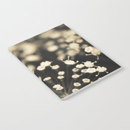 Summer Lace Notebook