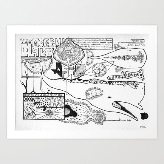 Whale Anatomy  Art Print