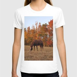 Horse Fall Days of Grazing T-shirt