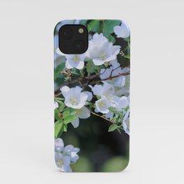 Hawthorn Wildflowers iPhone Case
