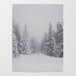 Winter walk - Landscape and Nature Photography Poster