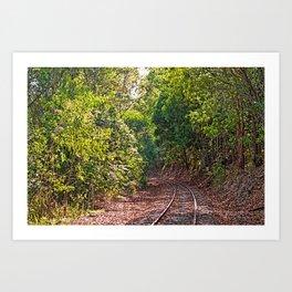 The curve in the rail Art Print