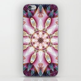 Mandalas from the Voice of Eternity 13 iPhone Skin