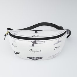 Whales - By Size Fanny Pack