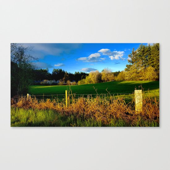 Golden Evening Light Across A Field Canvas Print