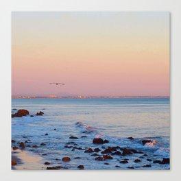 Gliding in Twilight Canvas Print