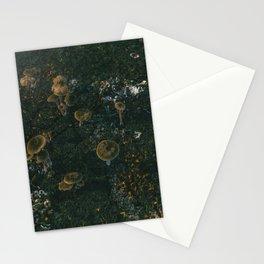 Day 1015 /// Quick trash, huge shrooms Stationery Cards