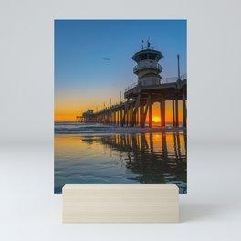 Soaring Seagull at Sunset Mini Art Print