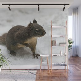 Winter Squirrel -  Cute Wildlife Animals Nature Photography Wall Mural