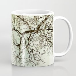 Winter tree branches in the sky Coffee Mug