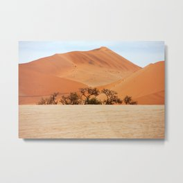 NAMIBIA ... Namib Desert Dunes I Metal Print