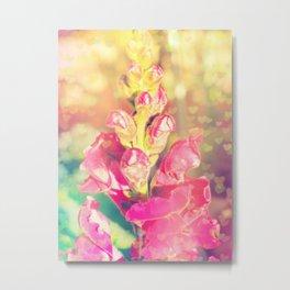 Lupinus-Pink Yellow Blue-Bokeh Hearts Metal Print