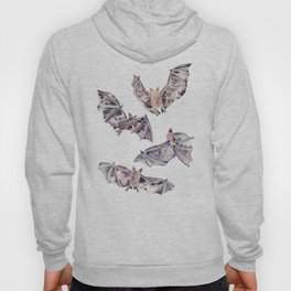 Bat Collection Hoody
