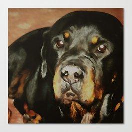 Dogs Lover Rottweiler Pet Portrait Canvas Print