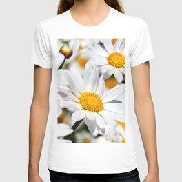 Daisy Flowers 0136 T-shirt