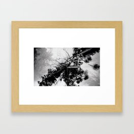 Seeing Double Framed Art Print