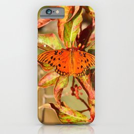 Butterfly In The Glades - Gulf Fritillary iPhone Case