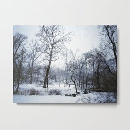 A wintery scene in Central Park Metal Print
