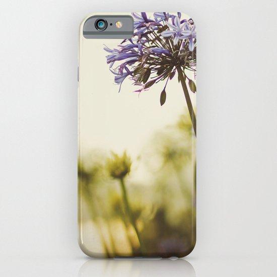 Agapanthus iPhone & iPod Case