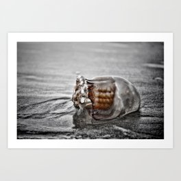 Is it Jelly or Glass Art Print
