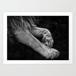 Paw Art Print