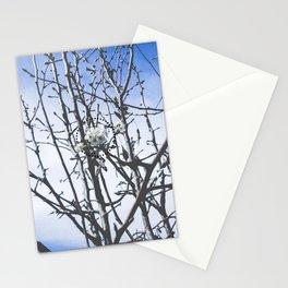 Three (Hazy Eyes) Stationery Cards
