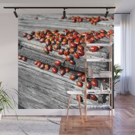 When the Ladybugs were Everywhere Wall Mural