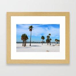 A Florida Winterday Framed Art Print