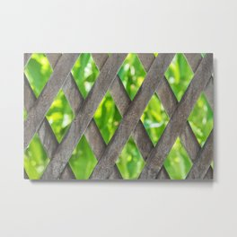 Metal material fence with green leafs at the background Metal Print