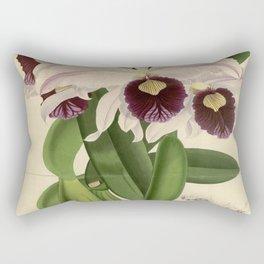 The Orchid Album - Dendrobium Suavissimum Rectangular Pillow