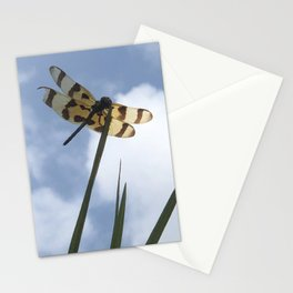 Bruised Dragon Fly Stationery Cards