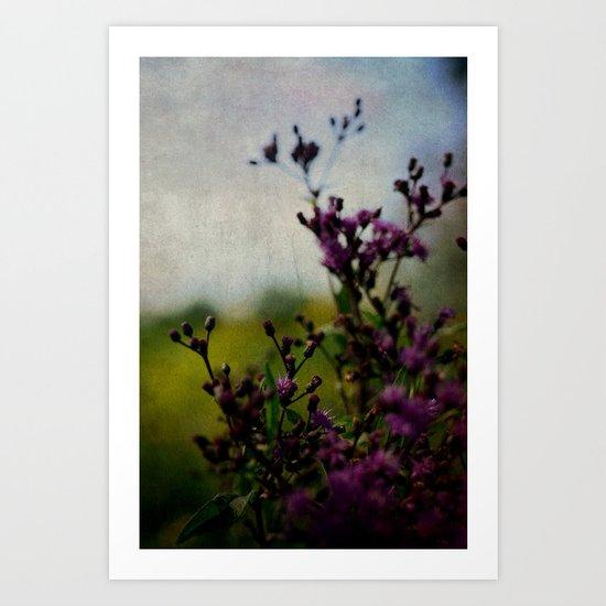 Ironweed Art Print