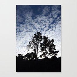 Montana D'oro clouds Canvas Print