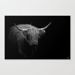 BW Hairy Coo Canvas Print