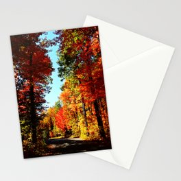 Fall Forest Road Stationery Cards
