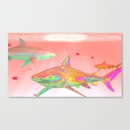 Candy Sharks Canvas Print