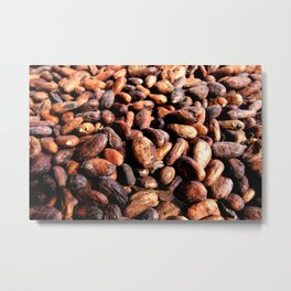 Cocoa seeds Metal Print